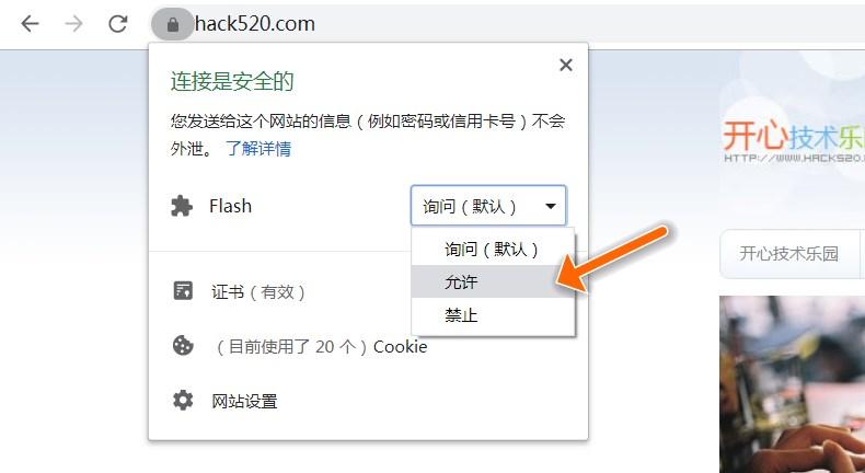Chrome 允许 Flash